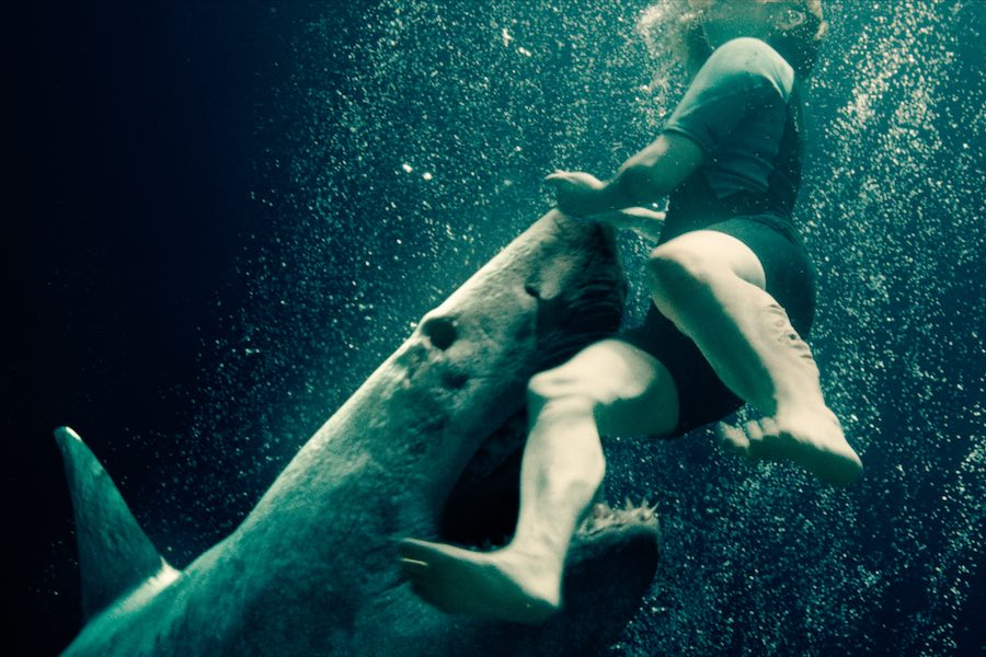 Recensie 47 Meters Down: Uncaged Cinemagazine