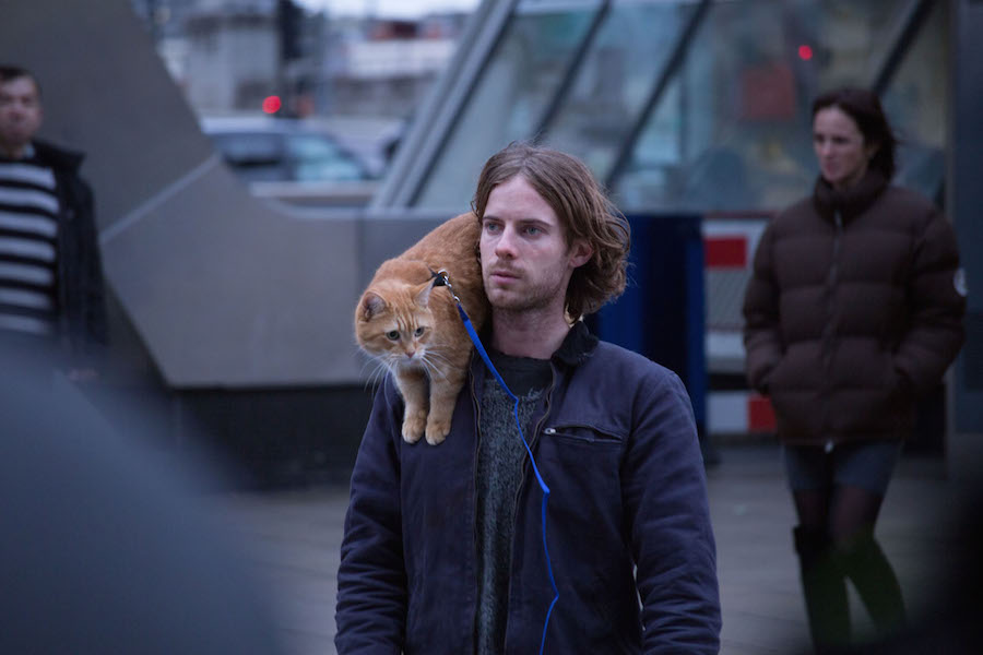 Recensie A Street Cat Named Bob Cinemagazine